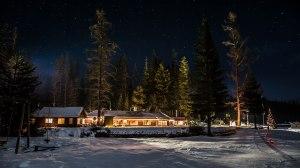Elkins Under Starlight
